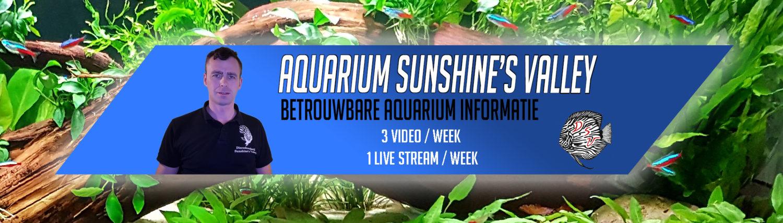 Aquarium Sunshine's Valley
